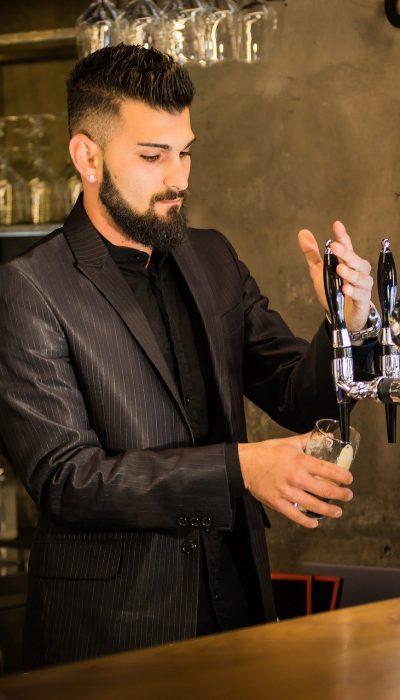 bartender, cocktails, adult